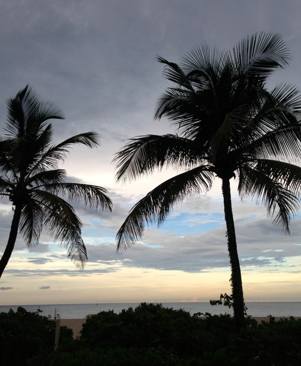 Florida summer evening sky at the beach